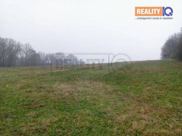 Prodej pozemku, Zbyslavice, foto 1 Reality, Pozemky | spěcháto.cz - bazar, inzerce