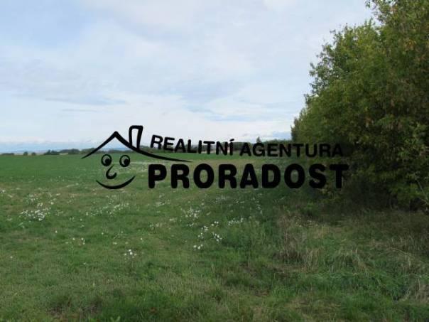 Prodej pozemku, Těšany, foto 1 Reality, Pozemky | spěcháto.cz - bazar, inzerce