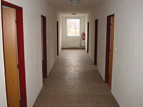 Prodej nebytového prostoru, Pelhřimov, foto 1 Reality, Nebytový prostor | spěcháto.cz - bazar, inzerce