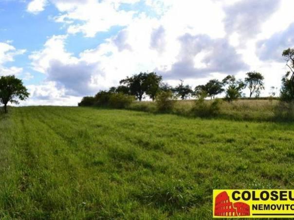 Prodej pozemku, Svatoslav, foto 1 Reality, Pozemky | spěcháto.cz - bazar, inzerce