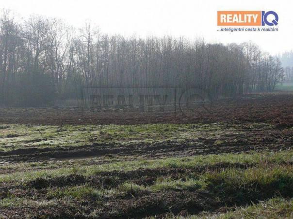 Prodej pozemku, Dolní Lánov, foto 1 Reality, Pozemky | spěcháto.cz - bazar, inzerce