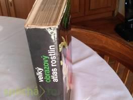 Velký obrazový atlas rostlin , Hobby, volný čas, Knihy  | spěcháto.cz - bazar, inzerce zdarma