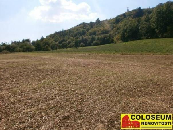 Prodej pozemku, Drásov, foto 1 Reality, Pozemky | spěcháto.cz - bazar, inzerce