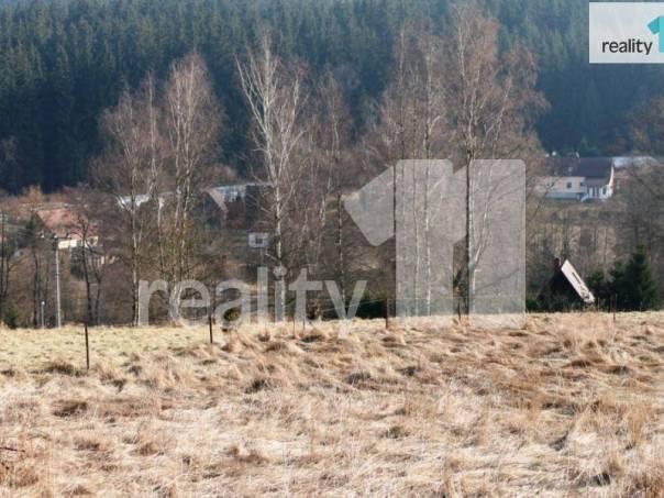 Prodej pozemku, Stará Voda, foto 1 Reality, Pozemky | spěcháto.cz - bazar, inzerce