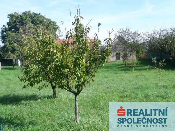 Prodej pozemku, Dříteč, foto 1 Reality, Pozemky | spěcháto.cz - bazar, inzerce