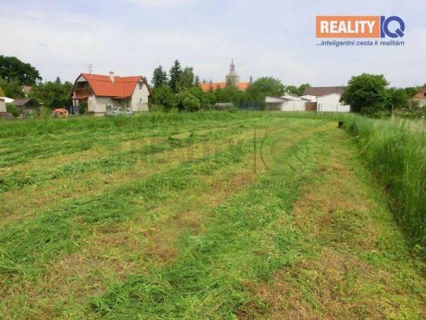 Prodej pozemku, Droužkovice, foto 1 Reality, Pozemky | spěcháto.cz - bazar, inzerce