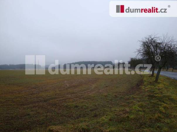 Prodej pozemku, Velký Bor, foto 1 Reality, Pozemky | spěcháto.cz - bazar, inzerce