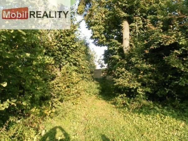 Prodej pozemku Ostatní, Chocenice - Zhůř, foto 1 Reality, Pozemky   spěcháto.cz - bazar, inzerce