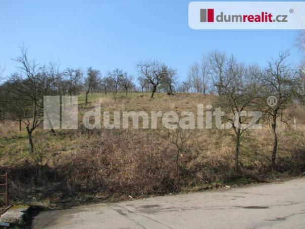 Prodej pozemku, Podhradí, foto 1 Reality, Pozemky | spěcháto.cz - bazar, inzerce