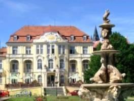 ZDRAVOTNÍ ASISTENT , Nabídka práce, Zdravotní a sociální služby  | spěcháto.cz - bazar, inzerce zdarma