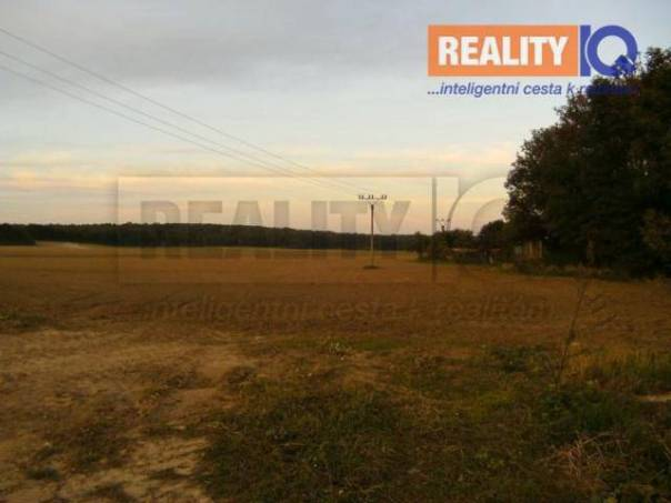 Prodej pozemku, Sojovice - Sojovice, foto 1 Reality, Pozemky | spěcháto.cz - bazar, inzerce