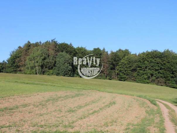 Prodej pozemku, Šimanov, foto 1 Reality, Pozemky | spěcháto.cz - bazar, inzerce