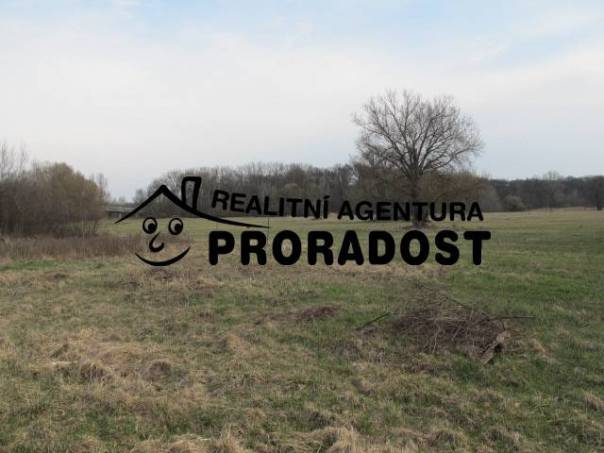 Prodej pozemku, Lanžhot, foto 1 Reality, Pozemky | spěcháto.cz - bazar, inzerce
