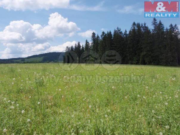 Prodej pozemku, Čachrov, foto 1 Reality, Pozemky | spěcháto.cz - bazar, inzerce