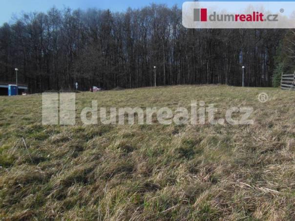 Prodej pozemku, Březnice, foto 1 Reality, Pozemky | spěcháto.cz - bazar, inzerce