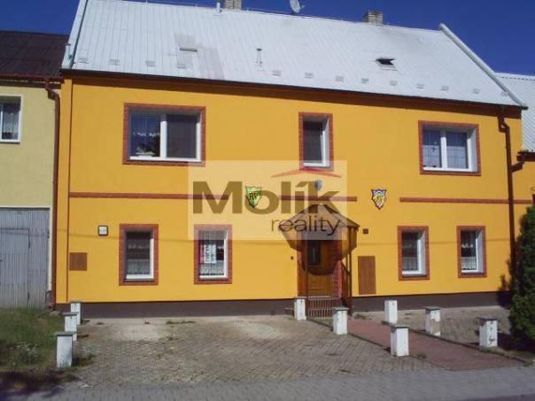 Pronájem nebytového prostoru Ostatní, Droužkovice, foto 1 Reality, Nebytový prostor | spěcháto.cz - bazar, inzerce