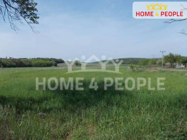 Prodej pozemku, Sedlec, foto 1 Reality, Pozemky | spěcháto.cz - bazar, inzerce