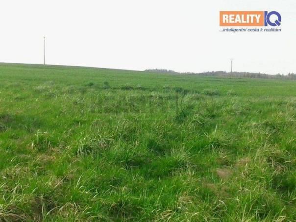 Prodej pozemku, Kyjovice, foto 1 Reality, Pozemky | spěcháto.cz - bazar, inzerce