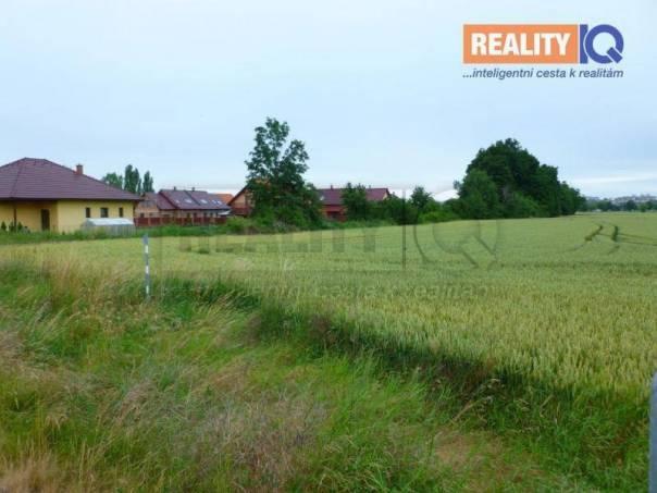 Prodej pozemku, Slatiňany, foto 1 Reality, Pozemky | spěcháto.cz - bazar, inzerce