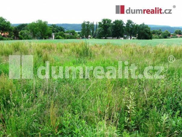 Prodej pozemku, Osov, foto 1 Reality, Pozemky | spěcháto.cz - bazar, inzerce