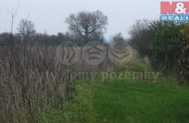 Prodej pozemku, Sadská, foto 1 Reality, Pozemky | spěcháto.cz - bazar, inzerce