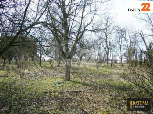 Prodej pozemku, Březí, foto 1 Reality, Pozemky | spěcháto.cz - bazar, inzerce