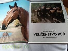 Veličenstvo kůň , Hobby, volný čas, Knihy  | spěcháto.cz - bazar, inzerce zdarma