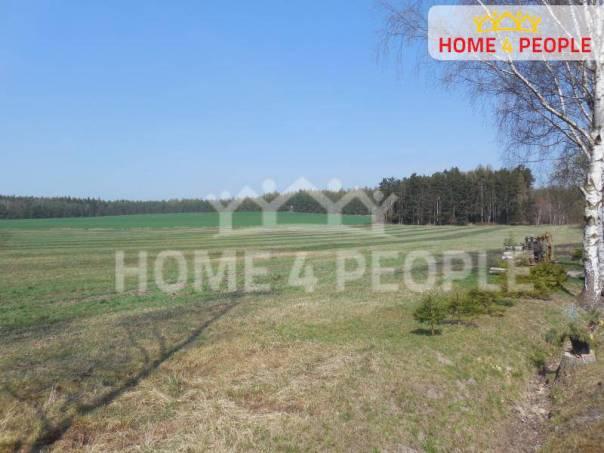 Prodej pozemku, Zemětice, foto 1 Reality, Pozemky   spěcháto.cz - bazar, inzerce
