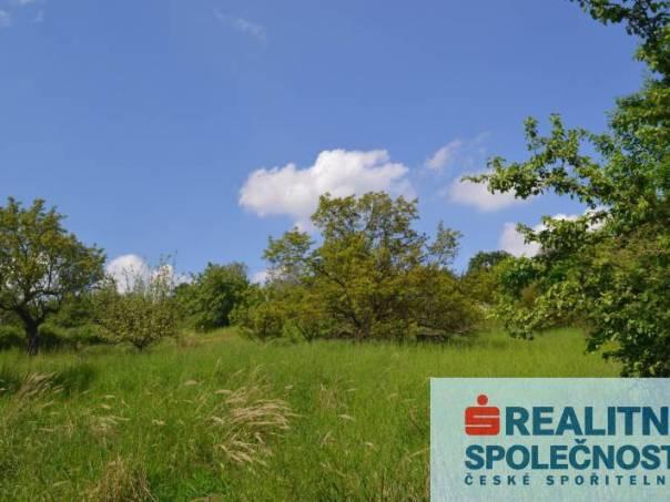 Prodej pozemku, Omice, foto 1 Reality, Pozemky | spěcháto.cz - bazar, inzerce