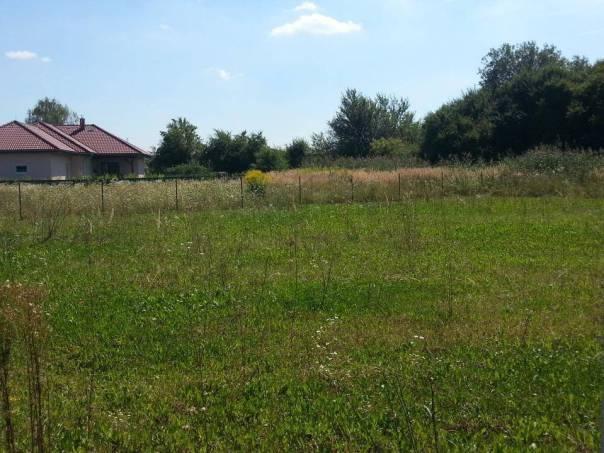 Prodej pozemku, Křenice, foto 1 Reality, Pozemky | spěcháto.cz - bazar, inzerce