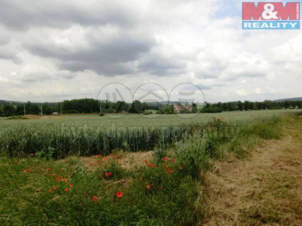 Prodej pozemku, Hluchov, foto 1 Reality, Pozemky | spěcháto.cz - bazar, inzerce