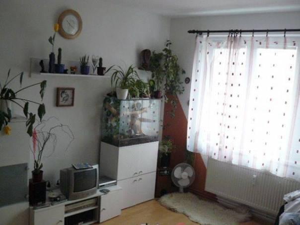 Prodej bytu 1+1, Polička, foto 1 Reality, Byty na prodej | spěcháto.cz - bazar, inzerce