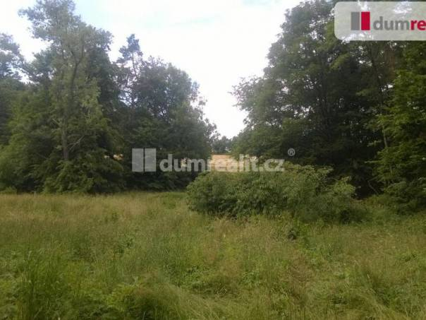 Prodej pozemku, Suchdol, foto 1 Reality, Pozemky | spěcháto.cz - bazar, inzerce