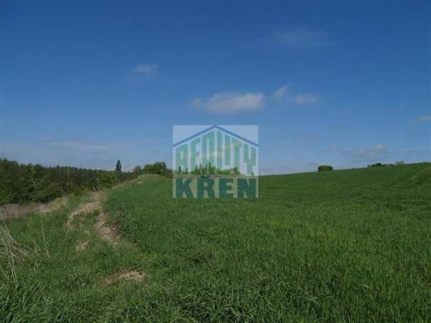 Prodej pozemku, Číčovice, foto 1 Reality, Pozemky | spěcháto.cz - bazar, inzerce