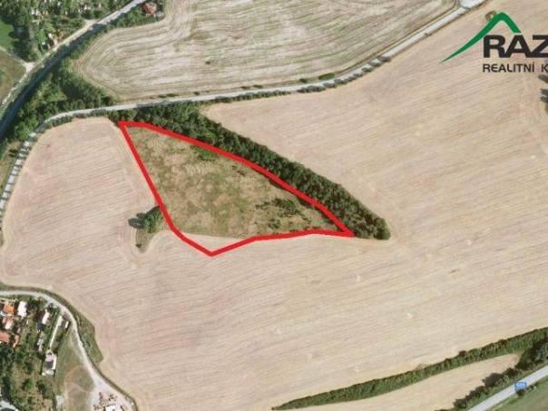 Prodej pozemku, Stříbro, foto 1 Reality, Pozemky | spěcháto.cz - bazar, inzerce