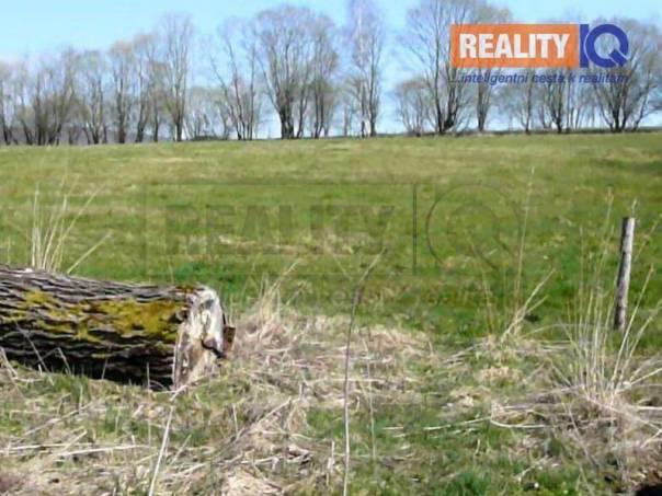 Prodej pozemku, Brandov, foto 1 Reality, Pozemky | spěcháto.cz - bazar, inzerce