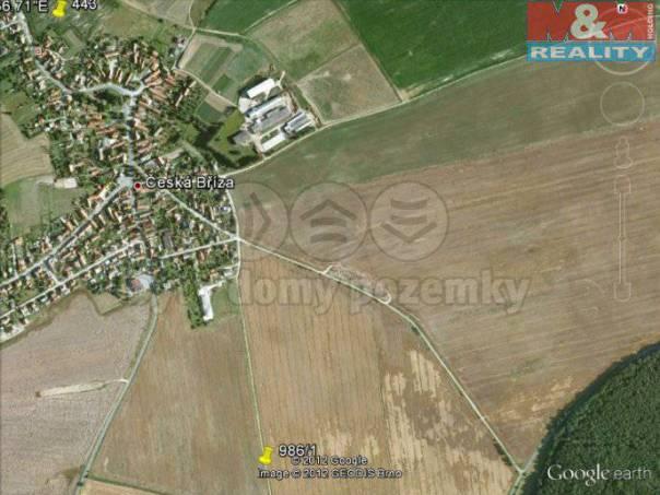 Prodej pozemku, Česká Bříza, foto 1 Reality, Pozemky | spěcháto.cz - bazar, inzerce