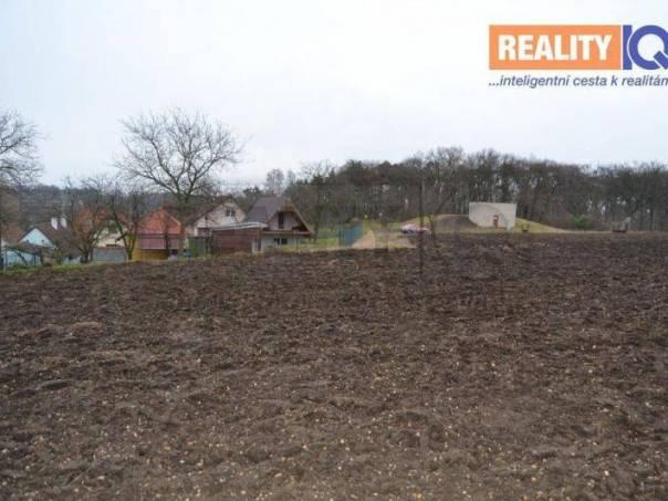 Prodej pozemku, Jeviněves, foto 1 Reality, Pozemky | spěcháto.cz - bazar, inzerce