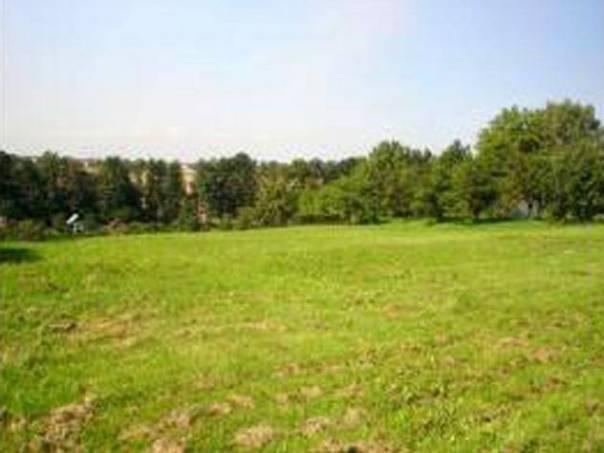 Prodej pozemku Ostatní, Šenov, foto 1 Reality, Pozemky | spěcháto.cz - bazar, inzerce