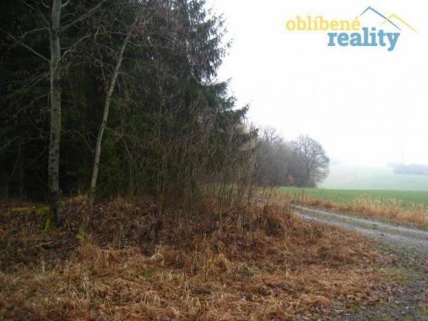 Prodej pozemku, Ostružno, foto 1 Reality, Pozemky | spěcháto.cz - bazar, inzerce