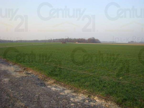Prodej pozemku, Uhlířov, foto 1 Reality, Pozemky | spěcháto.cz - bazar, inzerce