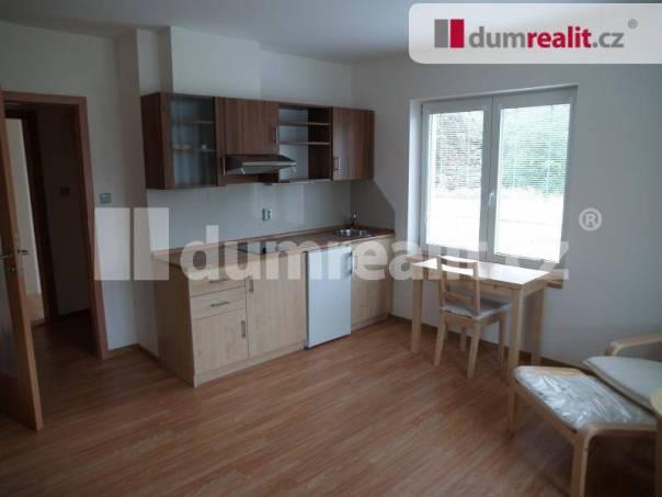 Pronájem bytu 1+kk, Libiš, foto 1 Reality, Byty k pronájmu | spěcháto.cz - bazar, inzerce
