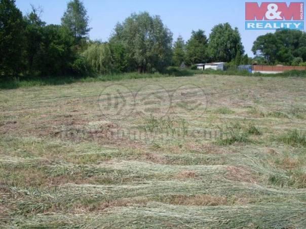 Prodej pozemku, Tismice, foto 1 Reality, Pozemky | spěcháto.cz - bazar, inzerce