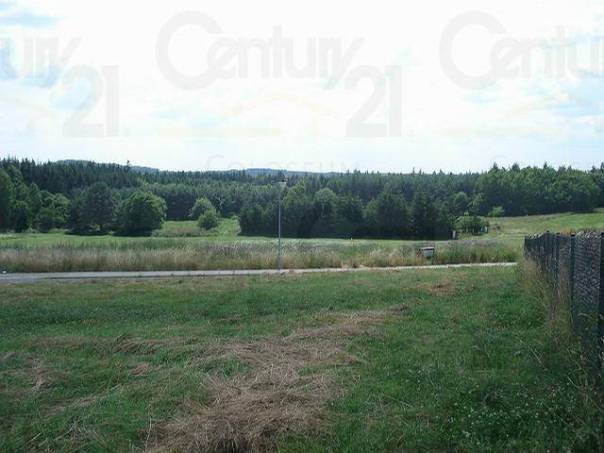 Prodej pozemku, Horní Bezděkov, foto 1 Reality, Pozemky | spěcháto.cz - bazar, inzerce