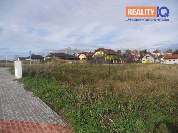 Prodej pozemku, Borovany, foto 1 Reality, Pozemky | spěcháto.cz - bazar, inzerce