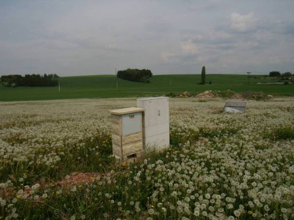 Prodej pozemku, Libřice, foto 1 Reality, Pozemky | spěcháto.cz - bazar, inzerce
