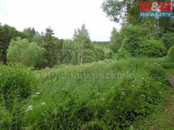 Prodej pozemku, Osek, foto 1 Reality, Pozemky | spěcháto.cz - bazar, inzerce