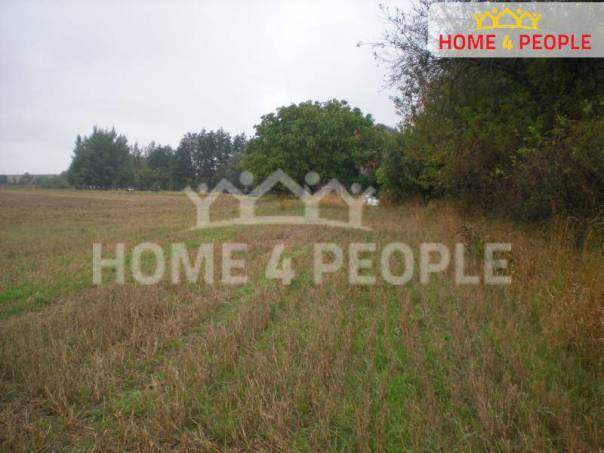 Prodej pozemku, Rašovice, foto 1 Reality, Pozemky | spěcháto.cz - bazar, inzerce