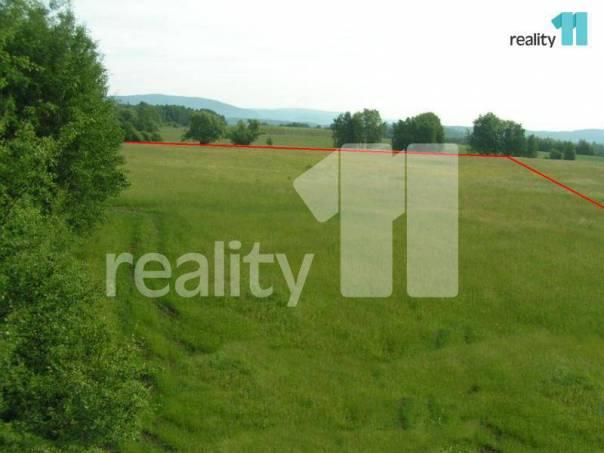 Prodej pozemku, Chodov, foto 1 Reality, Pozemky | spěcháto.cz - bazar, inzerce