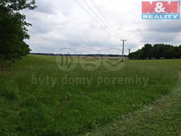 Prodej pozemku, Luže, foto 1 Reality, Pozemky | spěcháto.cz - bazar, inzerce